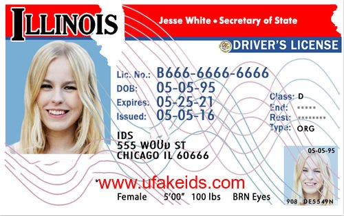 illinois fake id