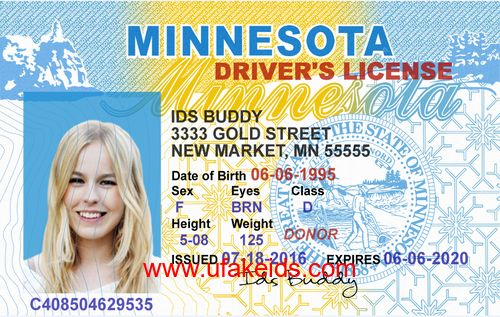 MINNESOTA Fake ID