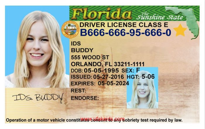 Florida Fake id