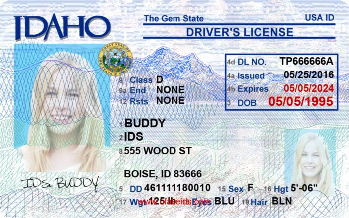Idaho Fake id