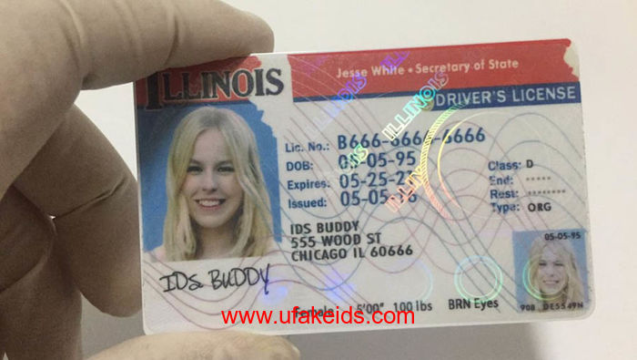 Fake Online Illinois – Best Id A Make Buy Ids Maker