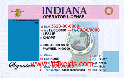 Indiana Fake ID Template – Buy Best Fake IDs | Make a Fake
