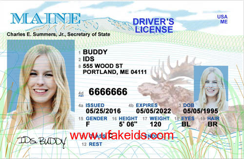 Maine Fake id