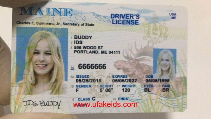Maine Fake ids