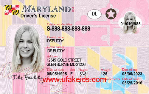 Maryland Fake id