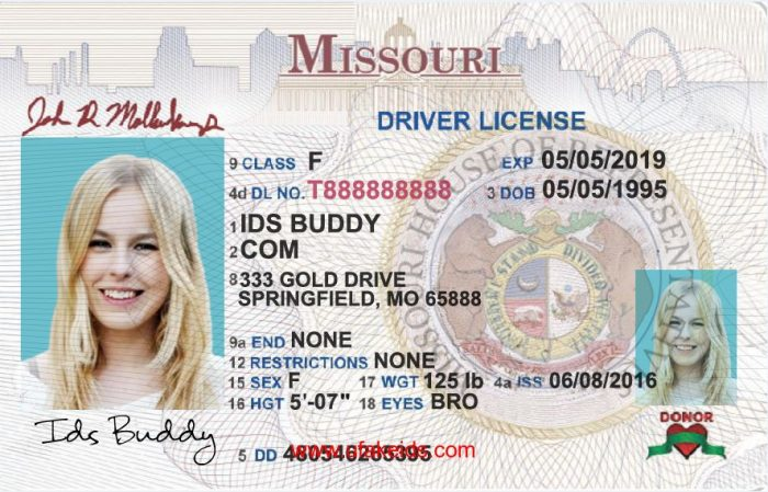 Missouri Fake ID