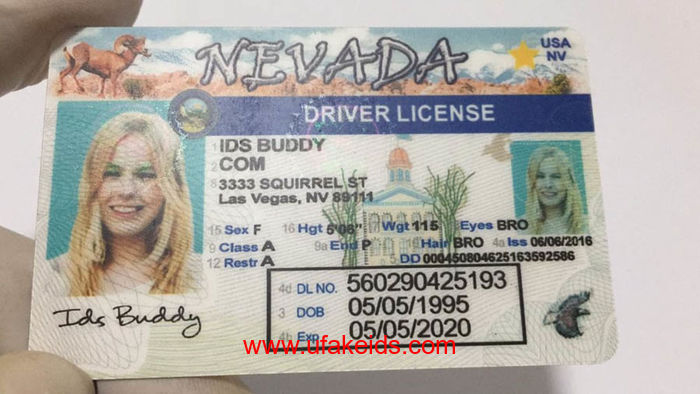 Nevada Fake ids