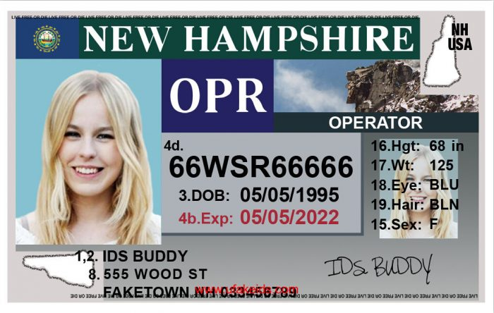New Hampshire Fake ID