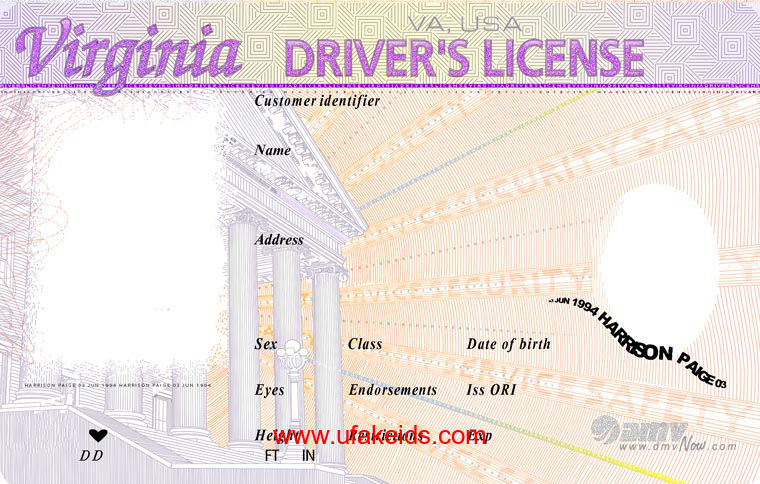 Virginia Fake ID Template – Buy Best Fake IDs | Make a Fake
