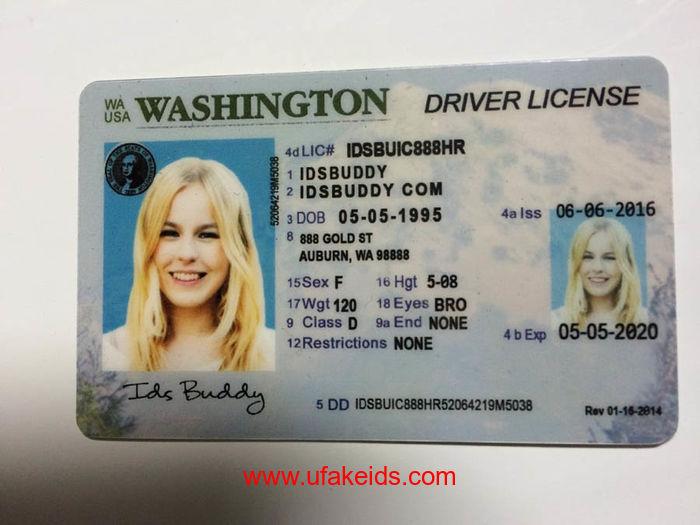 Washington Fake IDs
