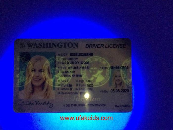 Washington Fake ID