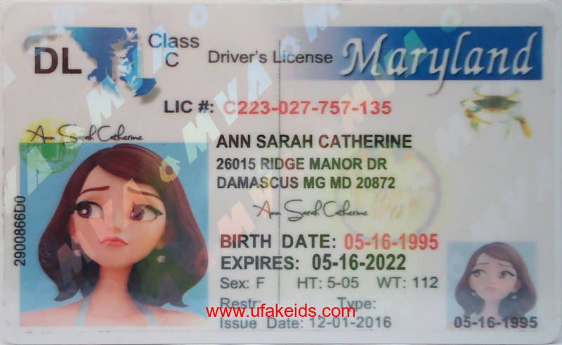 Best – License Make Buy Maker Fake Id Online A Maryland Ids