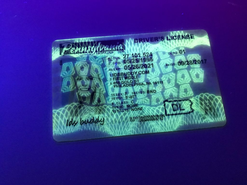 Pennsylvania New Fake ID License